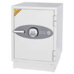 Phoenix DS2501E safe White