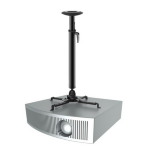 Newstar NM-BC75BLACK Ceiling Black project mount