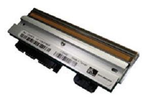 Zebra G79058M cabeza de impresora Térmica directa