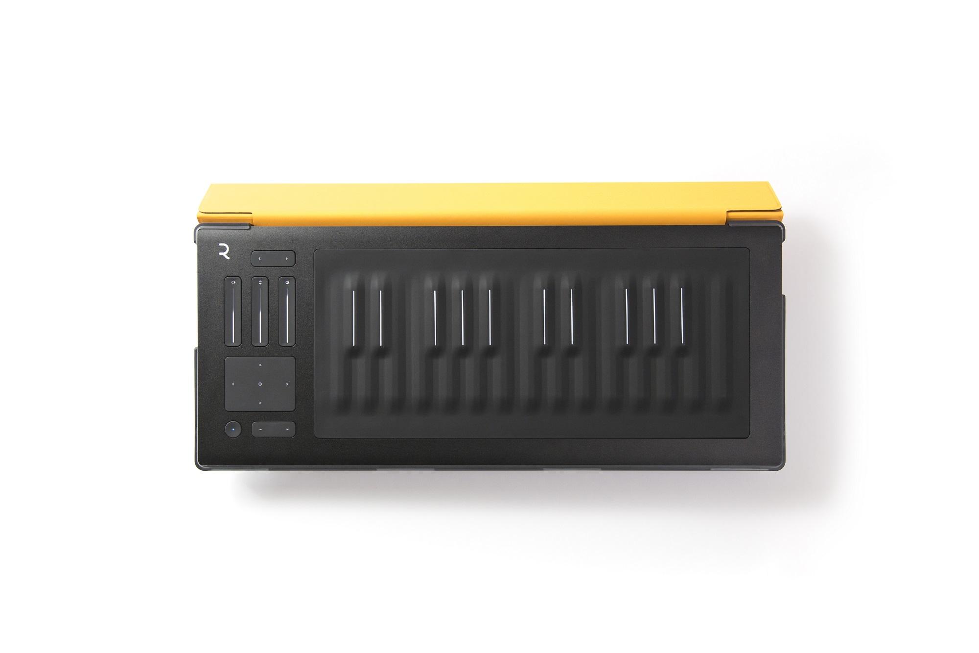 ROLI RISE 25 Flip Case - Amber