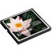 Kingston Technology 8GB CF Card
