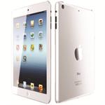 "Apple iPad mini 2 20.1 cm (7.9"") 16 GB Wi-Fi 4 (802.11n) 4G LTE Silver iOS"