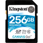 Kingston Technology Canvas Go! flashgeheugen 256 GB SDXC Klasse 10 UHS-I