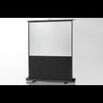 Celexon - Mobile Professional Plus - 152cm x 85cm - 16:9 - Portable Projector Screen