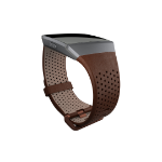 Fitbit FB-164LBDBS Marrón