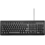 HP 100 keyboard USB Black