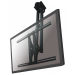 """Newstar TV/Monitor Ceiling Mount for 37""""-75"""" Screen, Height Adjustable - Black"""