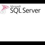 Microsoft E32-01096 software license/upgrade