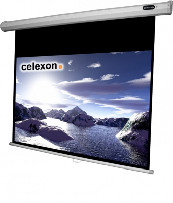 Celexon 1090251 16:9 Black,White projection screen