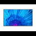 "NEC MultiSync M491 Pantalla plana para señalización digital 124,5 cm (49"") IPS 4K Ultra HD Negro"