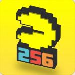 Namco Bandai Games Pac - Man 256 Basic PC English video game