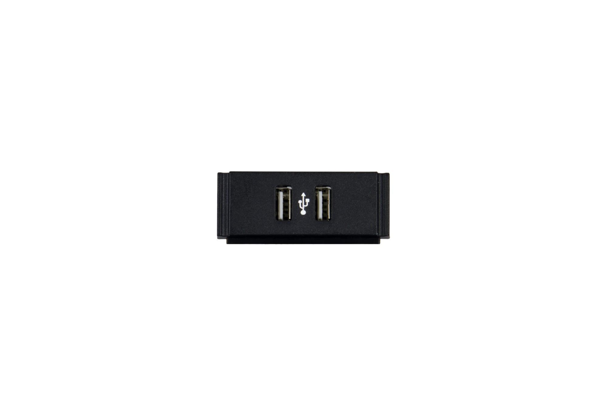 AMX USB Module
