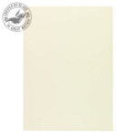 Blake Premium Business Paper Oyster Wove A4 297x210mm 120gsm (Pack 500)