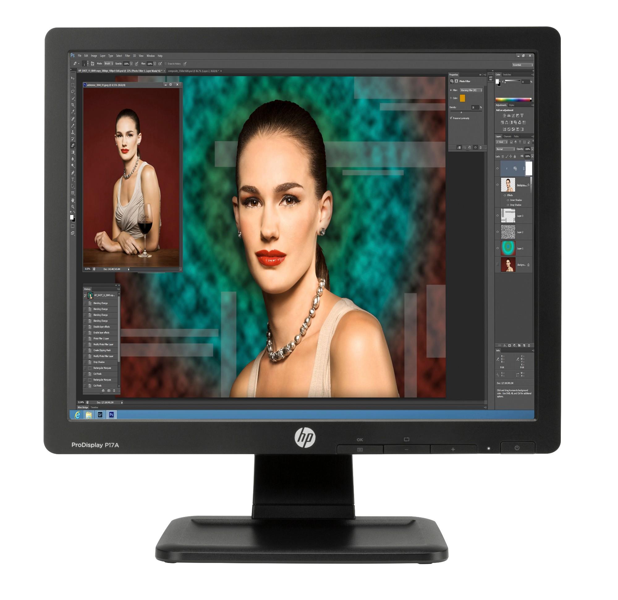 """HP ProDisplay P17A 43.2 cm (17"""") 1280 x 1024 pixels LED Black"""