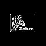 Zebra Z6M+ Printhead print head