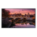 "Samsung QB50R Pantalla plana para señalización digital 127 cm (50"") 4K Ultra HD Negro"
