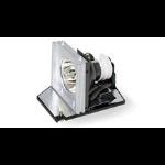 Acer EC.J6700.001 165W P-VIP projector lamp