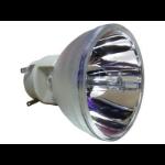 Pro-Gen ECL-8139-PG projector lamp