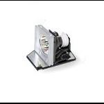 Acer MC.JG511.001 190W P-VIP projectielamp