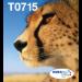Epson Multipack 4-colours T071 EasyMail