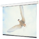 "Draper Targa projection screen 4.19 m (165"") 16:10"