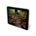 3M Natural View Screen Protectors for Universal Trim-to-Fit-Tablet