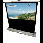 Celexon - Mobile Professional - 176cm x 99cm - 16:9 - Portable Projector Screen
