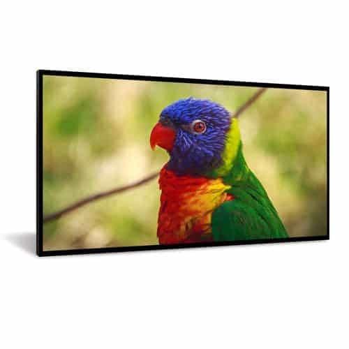 """DynaScan DI651ST2 pantalla de señalización 163,9 cm (64.5"""") LCD Full HD Pantalla plana para señalización digital Negro"""