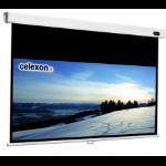 Celexon - Professional - 154cm x 87cm - 16:9 - Manual Projector Screen