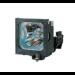 GO Lamps GL742 lámpara de proyección 300 W DLP