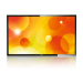 Philips Signage Solutions Q-Line Display BDL5520QL