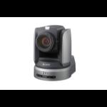 Sony BRC-H900 surveillance camera Indoor & outdoor Dome Black,Silver