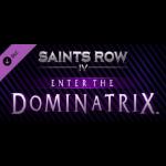 Deep Silver Saints Row IV - Enter The Dominatrix Video game downloadable content (DLC) PC