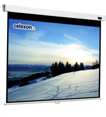 Celexon 1090049 projection screen 4:3
