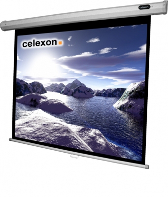 Celexon 1090246 4:3 Black,White projection screen