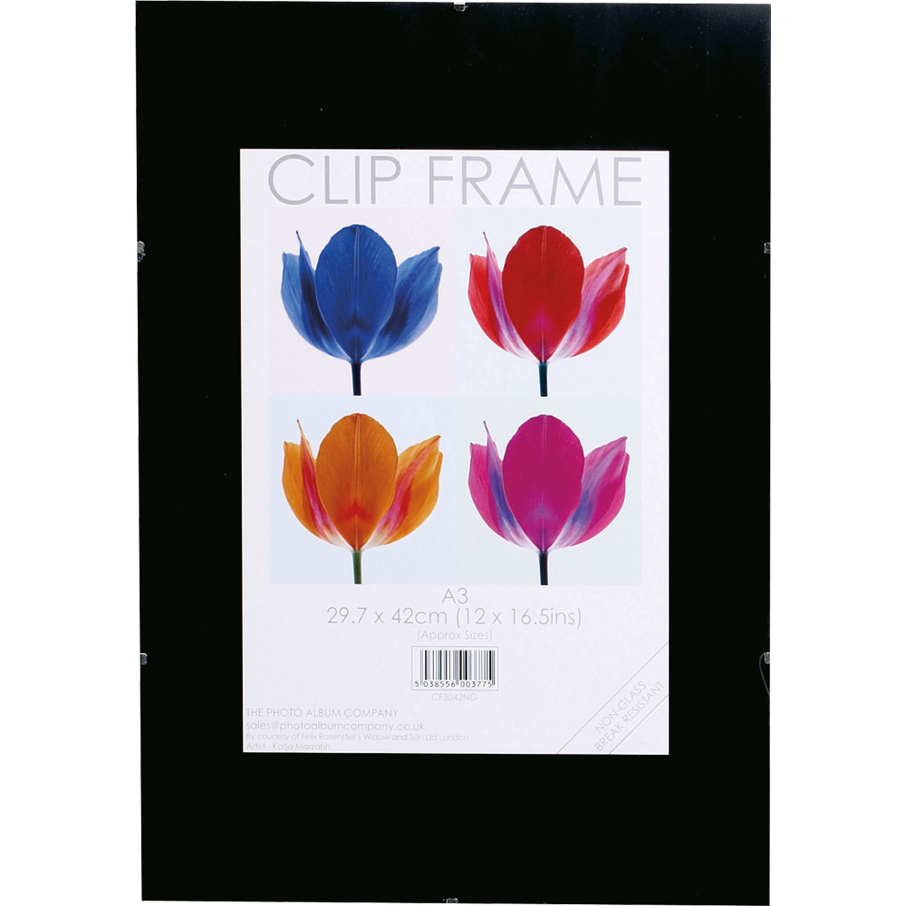 Photo Album Co A3 Poster Display Frameless Clip Frame