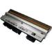 Zebra P1004234 cabeza de impresora Transferencia térmica