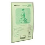 Pentel Display Book Clear personal organizer Green