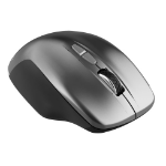 Canyon MW-21 mouse Right-hand RF Wireless Optical 1600 DPI CNS-CMSW21DG