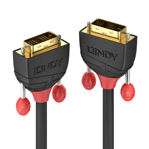 Lindy 36256 DVI cable 2 m DVI-D Black