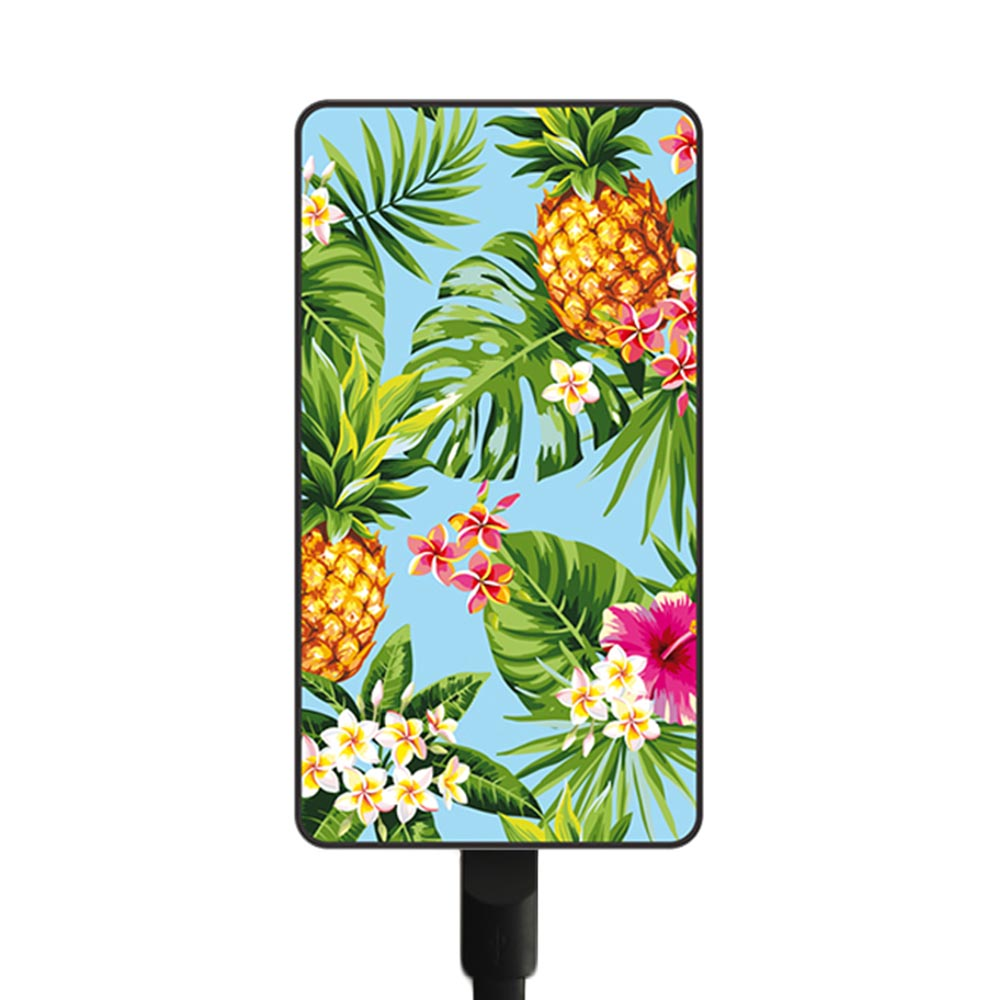 Smartoools Pineapple MC11 Battery Charger