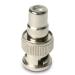 Startech .com RCA to BNC Adapter - F/M -  Video / audio adapter - RCA (F) - BNC (M) - coaxial