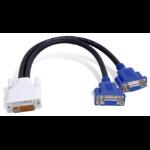 Matrox DVI-I - HD15 DVI-I 2 x VGA (D-Sub) Black