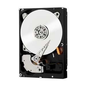 Western Digital RE 250GB Serial ATA III