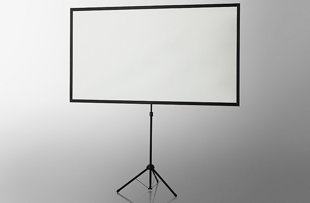 Celexon 1091477 16:9 Black, White projection screen