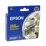 Epson T0540 ink cartridge