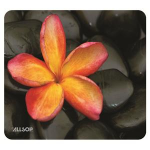 Allsop NatureSmart Multicolor