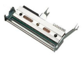 Intermec 1-010030-900 printkop Thermo transfer