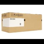 Ricoh D1464042 fuser