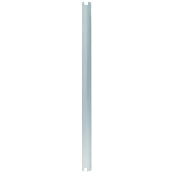 Newstar 200 Cm Extension Pole For Beamer-C80/Beamer-C200, Silver